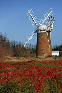 Which Haven Holidays Parks are in Norfolk?
